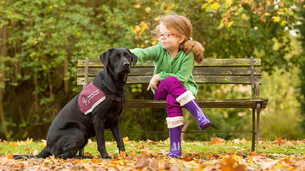 Hearing Dogs for the deaf